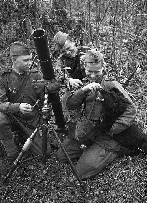 Military Mortar Sizes : Soviet mm o d mortar round replica arms manufacturer